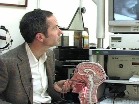Фиброларингоскопия, при которой изображение выводится на экран.