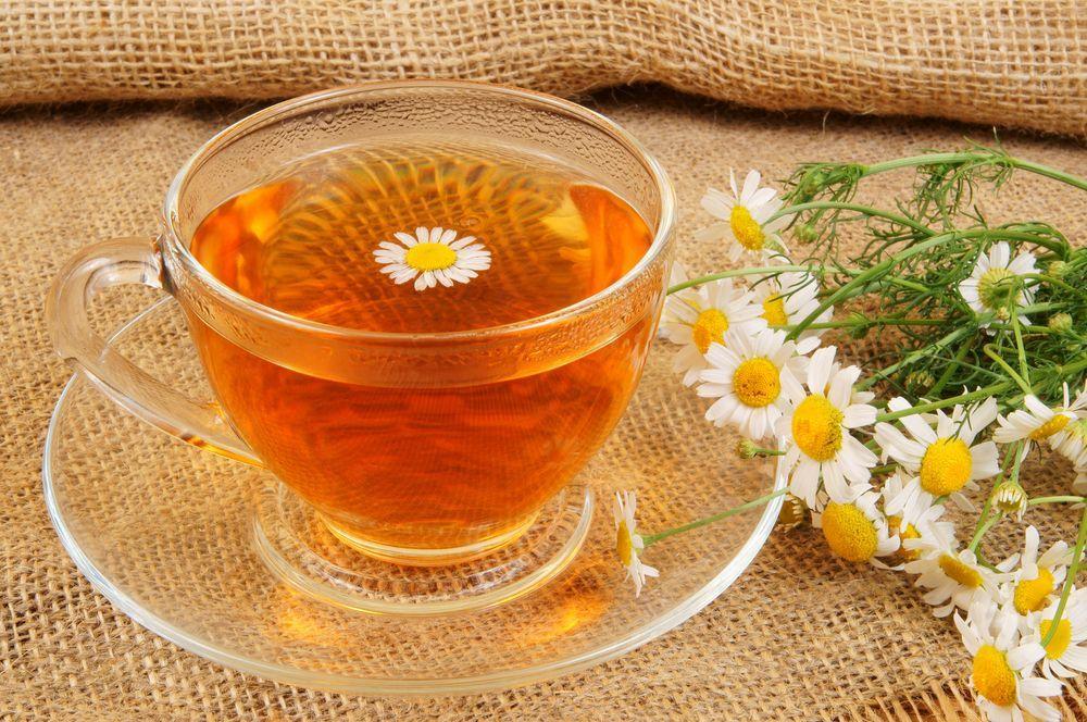 Отвар из цветков ромашки — простой и действенный при хронической ангине