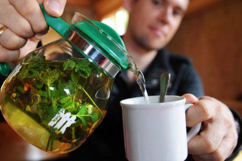 Использование лечебных трав и знание, как полоскать горло перекисью водорода, поможет скорейшему выздоровлению