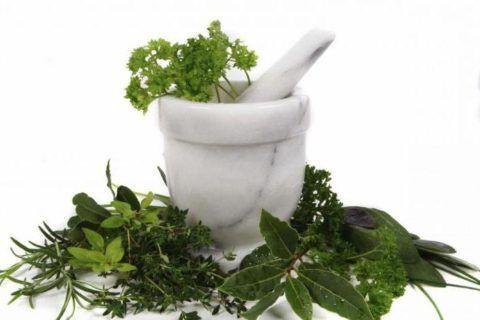 Травы могут быть большим подспорьем в лечении фарингита