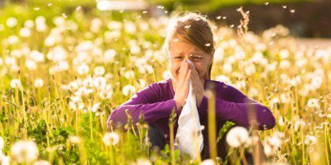 В летний период значительно возрастает число аллергических заболеваний