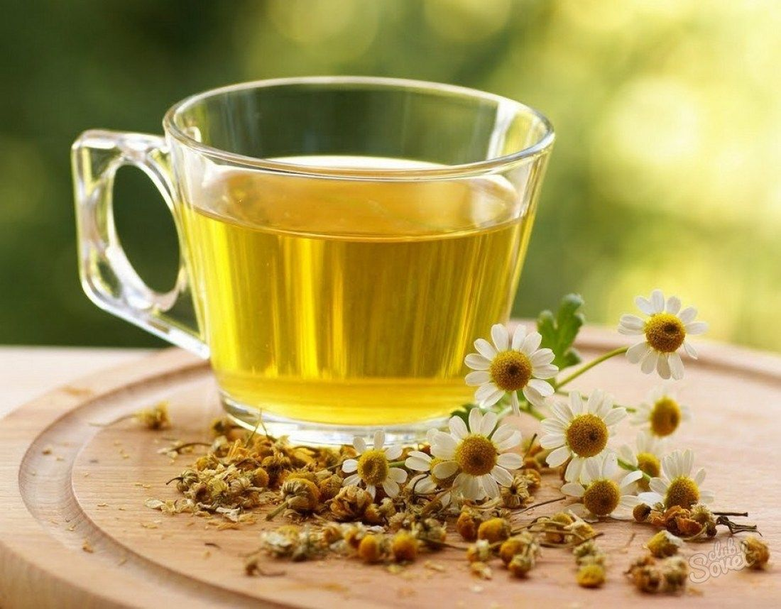 Ром - описание напитка и его видов; как пить; рецепт, как сделать цветки ромашки пектины, фитостерины