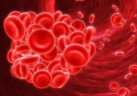 В каких значениях может употребляться понятие крови при ангине