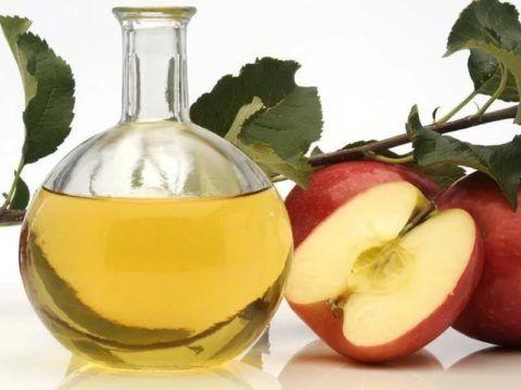 Яблочный уксус фото