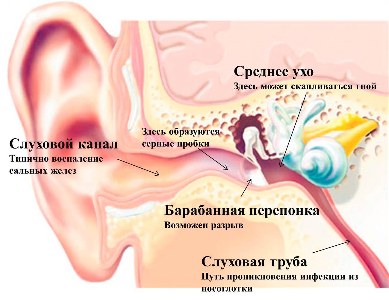 Болит горло и ухо заложило — причина в связи этих органов