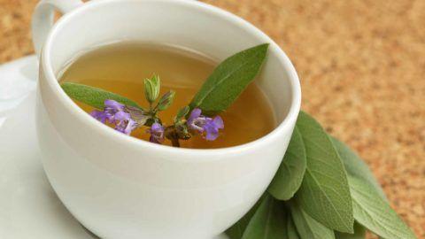 Лечение горла лекарственными растениями имеет большую популярность