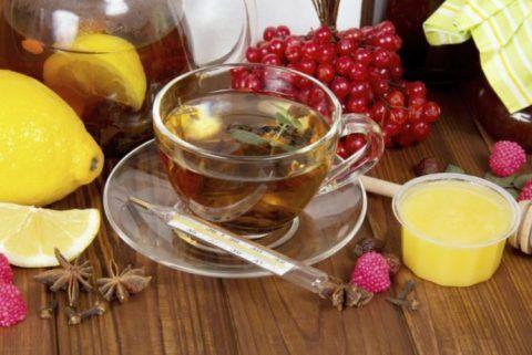 Чай, лимоны и калина