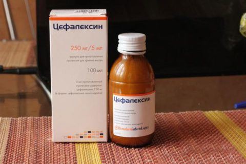Суспензия Цефалексин