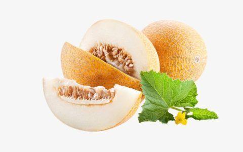 В мякоти, кожуре и листья дыни содержатся разные типы аллергенов